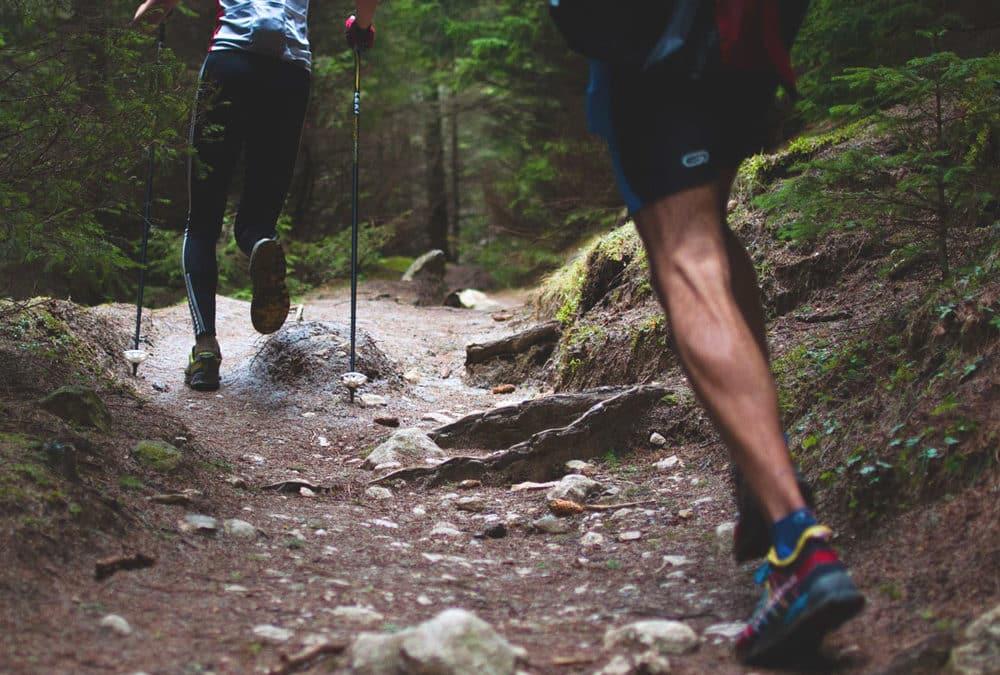 Trail du Chemin des Roys
