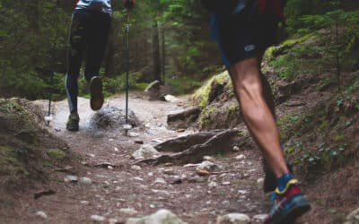 Alpin Trail du Chemin des Roys